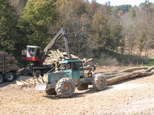 Skidders have lots of horsepower to skid trees up to a mile to the landing.