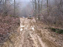 Main skid trail
