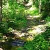 268_Stone Creek Tour (12)_large 12
