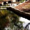 268_Stone Creek Tour (3)_large 4