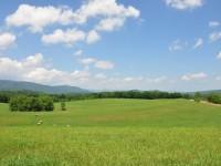 SUMMIT SPRINGS FARM<br />178 +/- ACRES