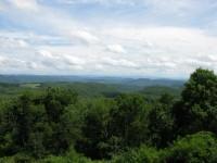TEMPA FOREST PRESERVE 179 +/- ACRES