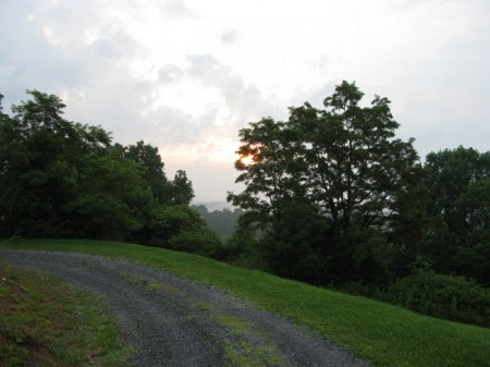 Tempa Forest Preserve 05
