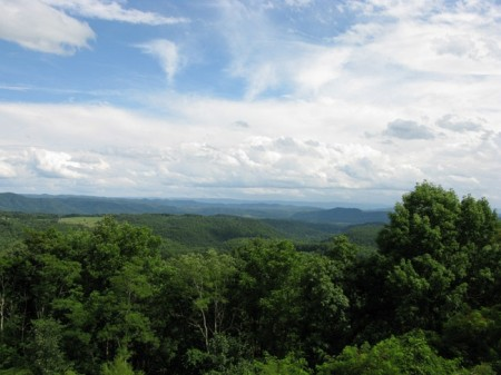 Tempa Forest Preserve 14