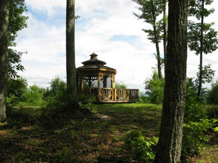 Tempa Forest Preserve 17