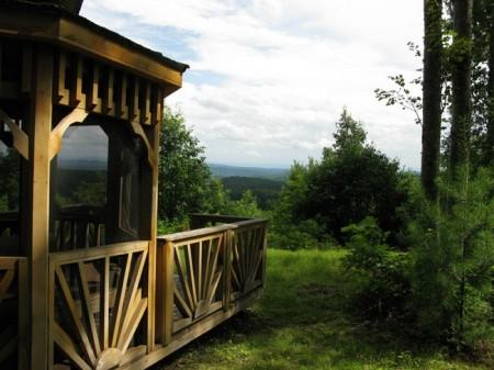 Tempa Forest Preserve 19