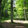 Tempa Forest Preserve 24