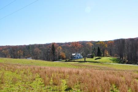 The Bobwhite Farm-012