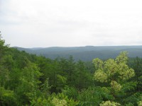 CANYON WOODS - 2,700 +/- ACRES