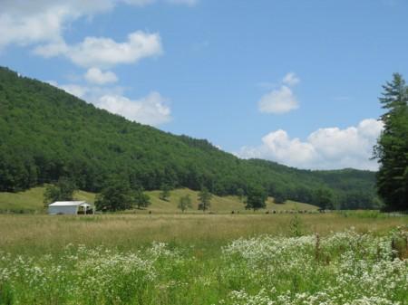 Sitlington Creek (1)