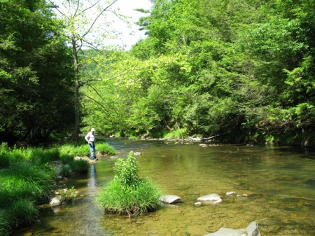 Sitlington Creek-17
