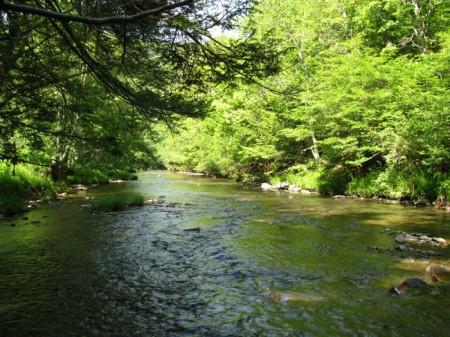 Sitlington Creek (2)