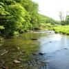 Sitlington Creek (3)