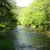 Sitlington Creek-4