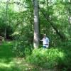 Sitlington Creek-6