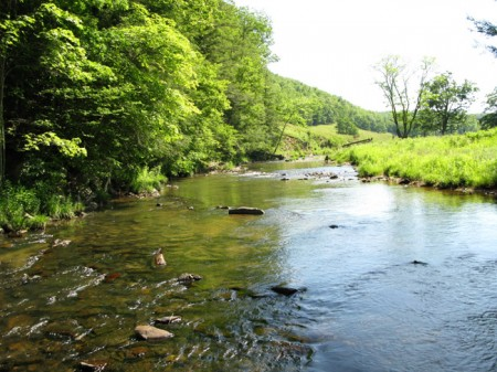Sitlington Creek-9