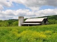 THE CHRISTIE FARM 94 ACRES IN MONROE COUNTY