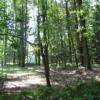 196_Woodlands - Thumbnails (1) six
