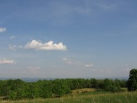 CHASE FARM - TRACT B - 48 +/- ACRES