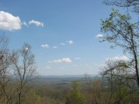 CHASE FARM - TRACT C - 85 +/- ACRES