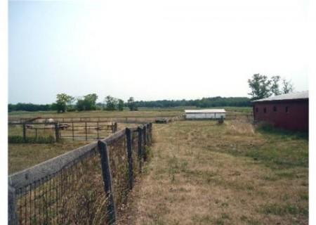 235_Wilmar Farm (23)_large
