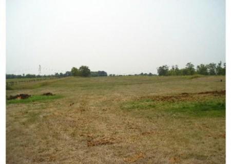 235_Wilmar Farm (8)_large