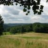 261_Spruce Grove Farm - Resize 08_large