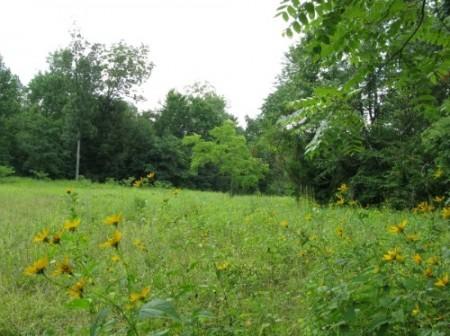 261_Spruce Grove Farm - Resize 12_large