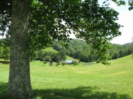 261_Spruce Grove Farm - Resize 15_large
