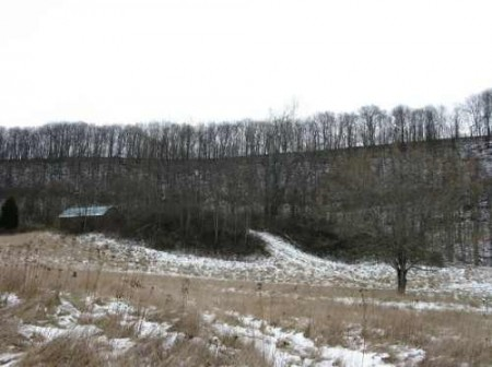265_Houchins Farm - 181 Acres - resize 08_large 18
