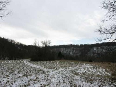 265_Houchins Farm - 181 Acres - resize 14_large
