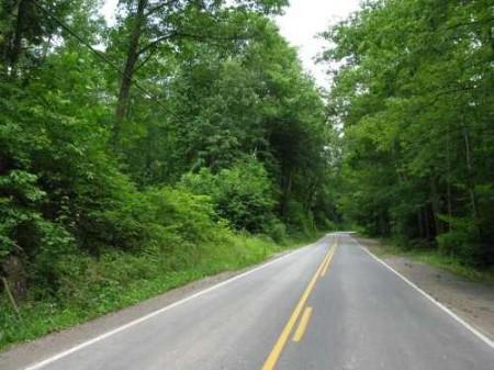269_Lefthand Fork Woodlands (2)_large