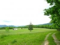 AUCTION: ORCHARD HILL FARM - 56 +/- ACRES