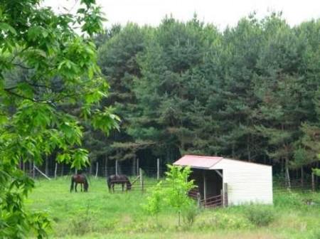 282_Jackson Lake & Farm (15)_large