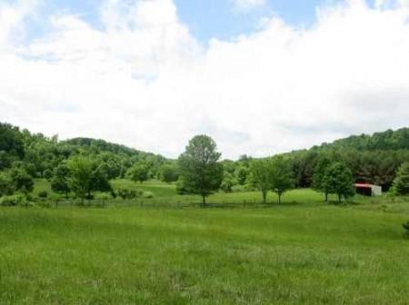 282_Jackson Lake & Farm (16)_large