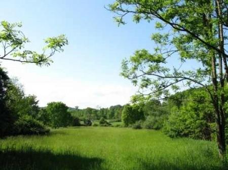282_Jackson Lake & Farm (18)_large