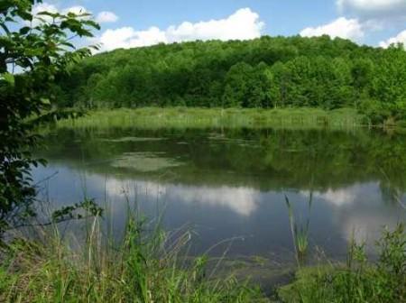 282_Jackson Lake & Farm (26)_large