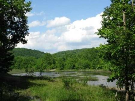 282_Jackson Lake & Farm (29)_large