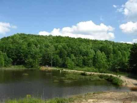 282_Jackson Lake & Farm (30)_large