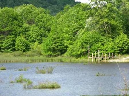 282_Jackson Lake & Farm (31)_large