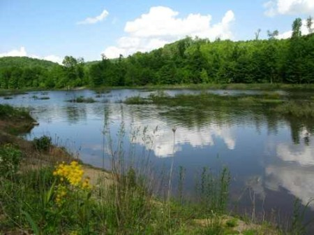 282_Jackson Lake & Farm (33)_large