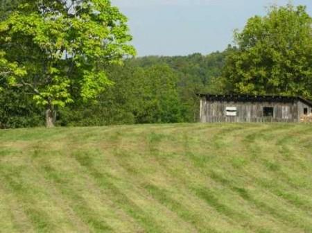 290_Wolfcreek Farm - Tour (6)_large 7