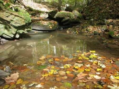 305_quite pool on creek_large 9