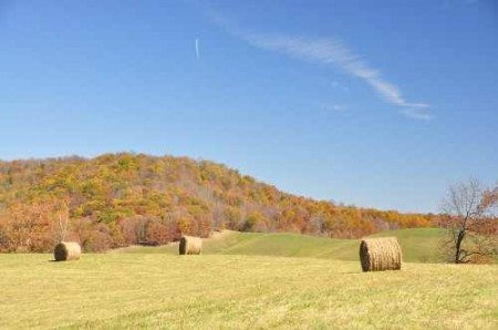 307_Grassy Meadows Farm - Hay Bales 2_large
