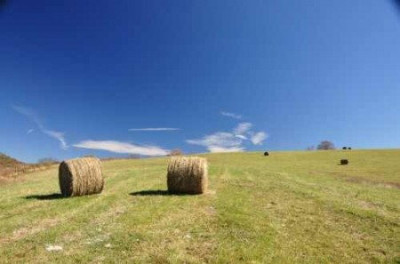 307_Grassy Meadows Farm - Tour 24