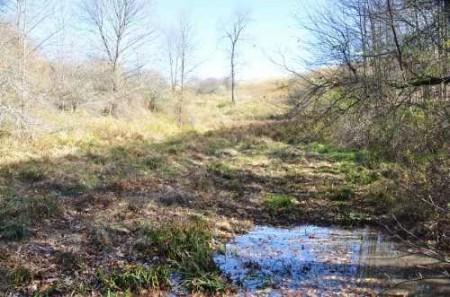 307_Grassy Meadows Farm - Tour 33
