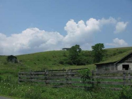 307_Workman - Grassy Meadows 12