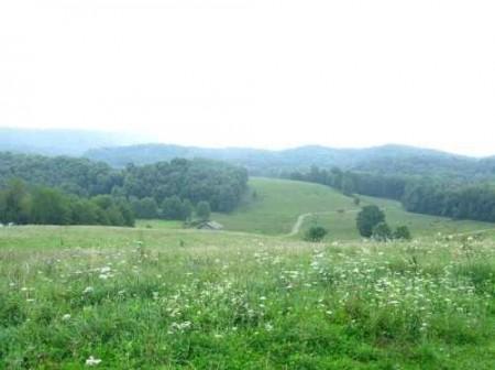 307_Workman - Grassy Meadows 14