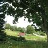 307_Workman - Grassy Meadows 4