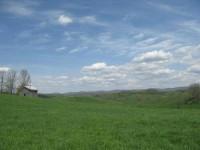 THE BECKETT FARM - 219 +/- ACRES